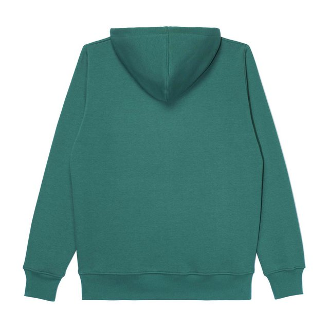 HOODIE SURROUND SPRING GREEN