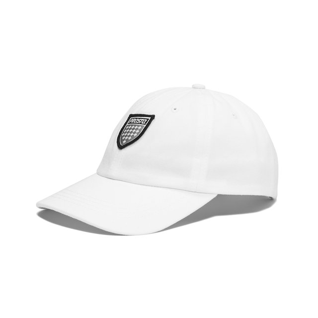 6 PANEL SHIELD WHITE